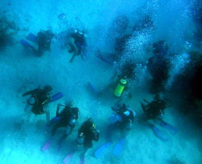 A circle of divers practice their skills